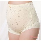 Maternity Panties - Bear Yellow